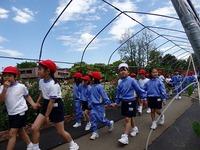 春の遠足 (1).jpg