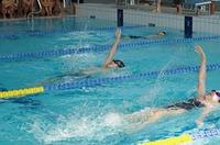 20140930校内水泳記録会 (2).jpg