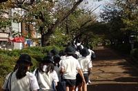 201410_3年鎌倉めぐり (2).jpg