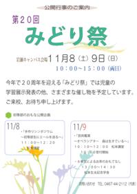midori2014.png