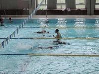 03-5年水泳.jpg