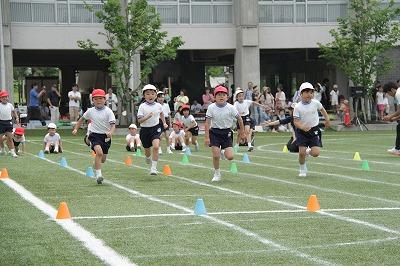 http://www.kamakura-u.ac.jp/sys/elementary_news/images/2013%E9%81%8B%E5%8B%95%E4%BC%9A%20%282%29.jpg