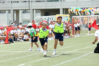 http://www.kamakura-u.ac.jp/sys/elementary_news/images/20180609%20%286%29.jpg