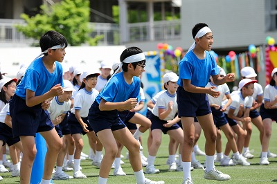 http://www.kamakura-u.ac.jp/sys/elementary_news/images/20180609%20%287%29.jpg