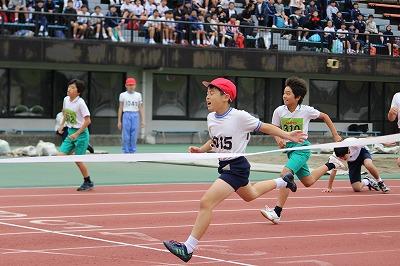 http://www.kamakura-u.ac.jp/sys/elementary_news/images/20181012%20%282%29.jpg