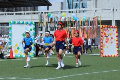 http://www.kamakura-u.ac.jp/sys/elementary_news/images/20190518%20%281%29.jpg