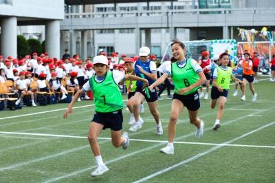 http://www.kamakura-u.ac.jp/sys/elementary_news/images/20190518%20%287%29.jpg