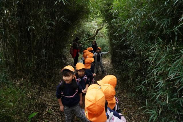 8)森の径.jpg
